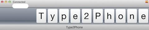 Type 1