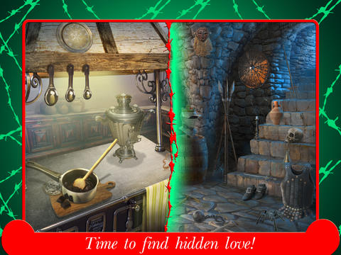 Hidden Mystery- Forbidden Love Collector's Edition