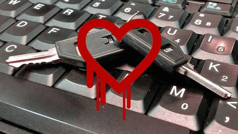 http://mashable.com/2014/04/08/major-security-encryption-bug-heartbleed/