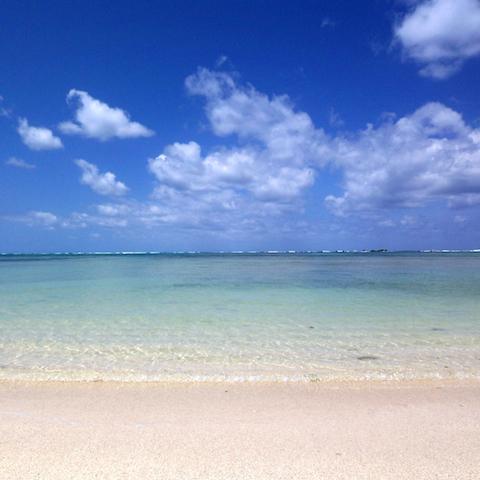 Playa paraíso 480