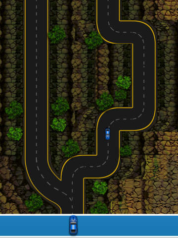 The Car Track