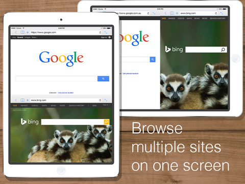 Split Web Browser