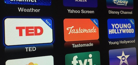 ted_tastemade_young_hollywood