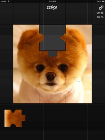 CamPuzzle