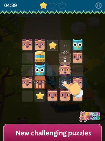 Puzzle Bear