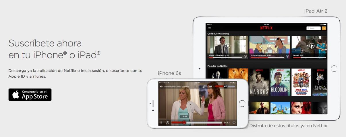 netflix iphone ipad