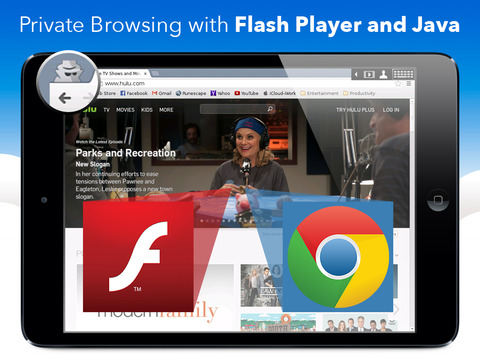 privateBrowser with Flash Player